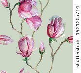 Pink Magnolia Flowers....
