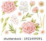 watercolor roses  lunaria ... | Shutterstock . vector #1921459391