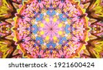 Mandala Symmetrical Colorful...