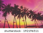 tropical sunset over sea with... | Shutterstock . vector #192196511