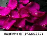 Bouquet Of Roses On March 8 For ...