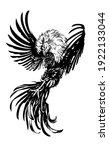 Rooster  Black And White Vector ...