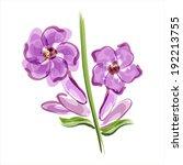 lavender. flower closeup.... | Shutterstock .eps vector #192213755