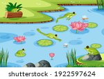 many green frogs in the pond... | Shutterstock .eps vector #1922597624