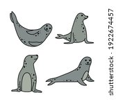 vector set of sea seals. marine ... | Shutterstock .eps vector #1922674457