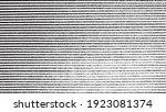 slim lines texture. parallel... | Shutterstock .eps vector #1923081374