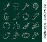 icon set of healthy vegetables...   Shutterstock .eps vector #1923493751