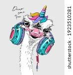 fun ostrich in a headphones... | Shutterstock .eps vector #1923510281