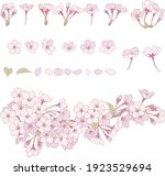 cherry blossom line drawing... | Shutterstock .eps vector #1923529694