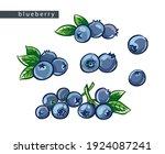 sketch blue blueberries  set of ... | Shutterstock .eps vector #1924087241