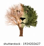 Silhouette Of A Lion Formed On...