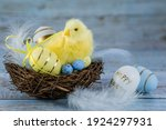 Blue  Yellow  Whiteeggs In The...
