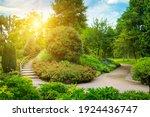 An Urban Garden With Lush...