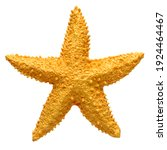 Yellow starfish souvenir ...
