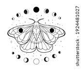 occult illustration of flying...   Shutterstock .eps vector #1924481027