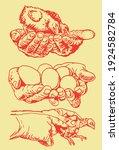 color illustration of chicks... | Shutterstock .eps vector #1924582784