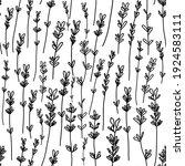 monochrome white black lavender ... | Shutterstock . vector #1924583111