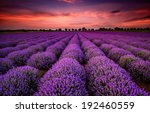 stunning landscape with... | Shutterstock . vector #192460559