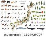 isometric 3d design of japan... | Shutterstock .eps vector #1924929707