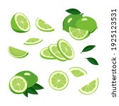 lime icons set. bright whole... | Shutterstock .eps vector #1925123531