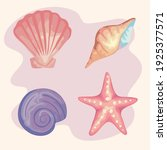 bundle of four sea shells... | Shutterstock .eps vector #1925377571