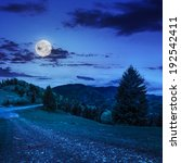 asphalt road going down the hill and up in to mountains, passes through the green shaded forest at night in moon light - stock photo