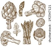 vector set of engraving... | Shutterstock .eps vector #192547121