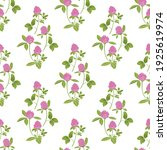 hand drawn red clover on a... | Shutterstock .eps vector #1925619974