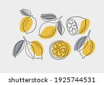 fresh lemons print. hand drawn ... | Shutterstock .eps vector #1925744531