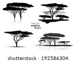 Silhouette Of Africa Trees...