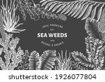 seaweed design template. hand... | Shutterstock .eps vector #1926077804