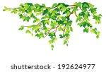 vector illustration of a green...   Shutterstock .eps vector #192624977