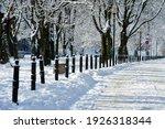 City Park In Winter. Snow...