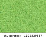 green grass field spring...   Shutterstock .eps vector #1926339557