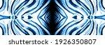 Zebra Print Seamless Pattern....