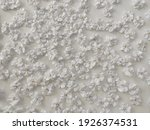 luxury textile flowers with...   Shutterstock . vector #1926374531
