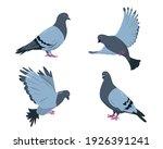 pigeon birds set. doves in...   Shutterstock .eps vector #1926391241