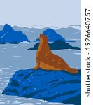 california harbor seal on rock...   Shutterstock .eps vector #1926640757