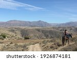 Horseback Rider In Bolivian...