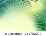palm leaves background. | Shutterstock . vector #192702074