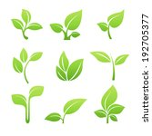 set of green leaves design... | Shutterstock .eps vector #192705377