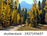 Autumn Mountain Forest   Two...