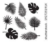 vector set bundle of hand drawn ... | Shutterstock .eps vector #1927251914
