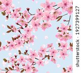 Falling Japanese Cherry Petals  ...