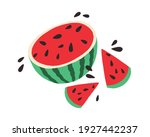half of watermelon with slices...   Shutterstock .eps vector #1927442237