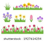 Green Grass And Spring Flowers...