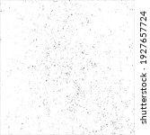 vector grunge black and white...   Shutterstock .eps vector #1927657724