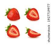 set of realistic fresh... | Shutterstock .eps vector #1927719977