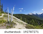Amazing view of montains on one of the most scenic hiking trails in Seattle, Washington - stock photo