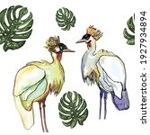 cranes and monsteras leafs... | Shutterstock .eps vector #1927934894
